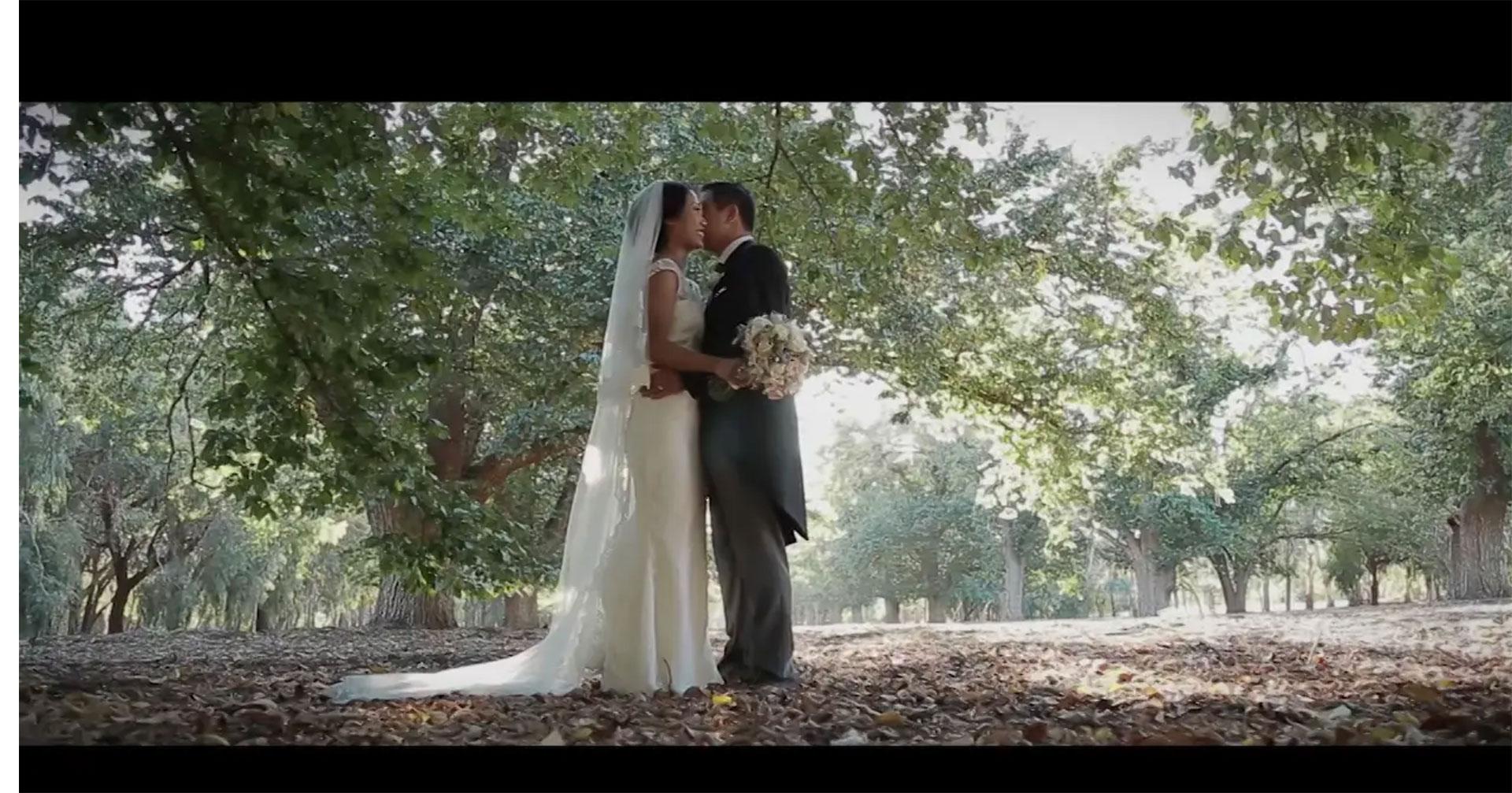 Wedding Highlight Film, Chloe's Restaurant, Adelaide